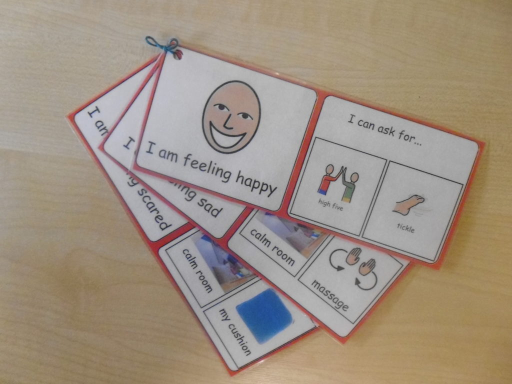 emotion response visual support asd teacher